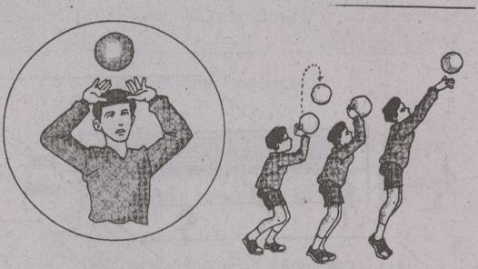 Teknik Cara Servis Bawah Dan Servis Atas Pada Permainan Bola Voli Contoh Surat