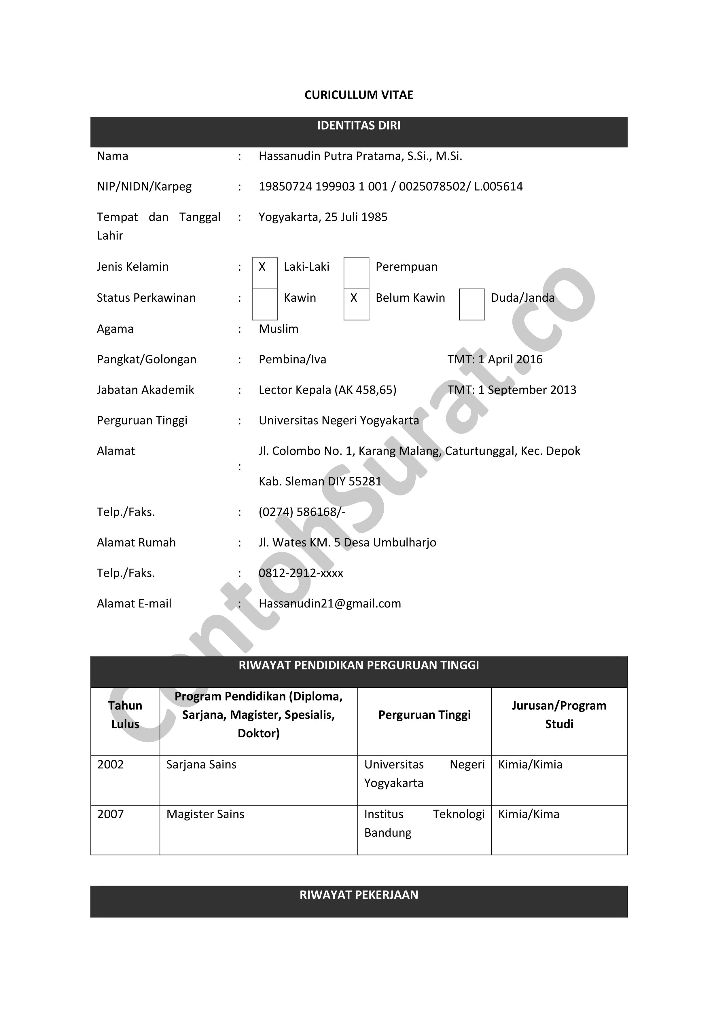 Contoh Daftar Riwayat Hidup Pegawai Negeri Sipil