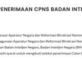 Formasi CPNS di Badan Intelejen Negara (BIN)